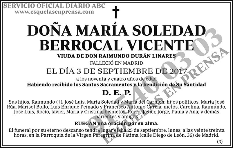 María Soledad Berrocal Vicente